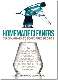 Homemade cleaners-DionnaFord